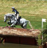 horse-trials-379466_1920