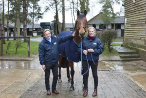 Katie Jerram-Hunnable and Chris Hunnable feed Horslyx Balancers to their team of show horses